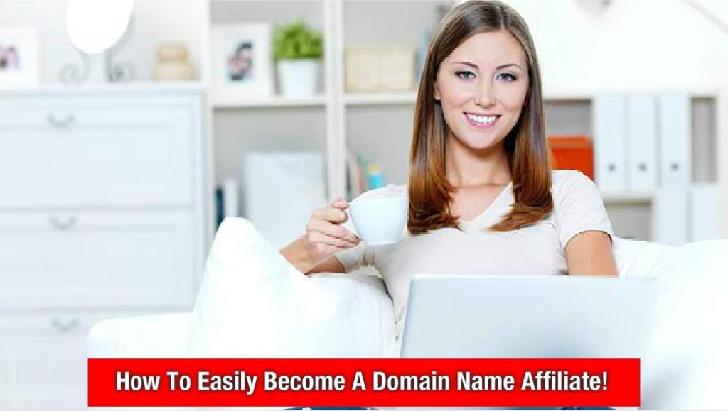 Domain Name Search Tool